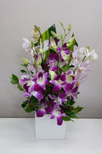 Singapore orchids arranged into a ceramic pot