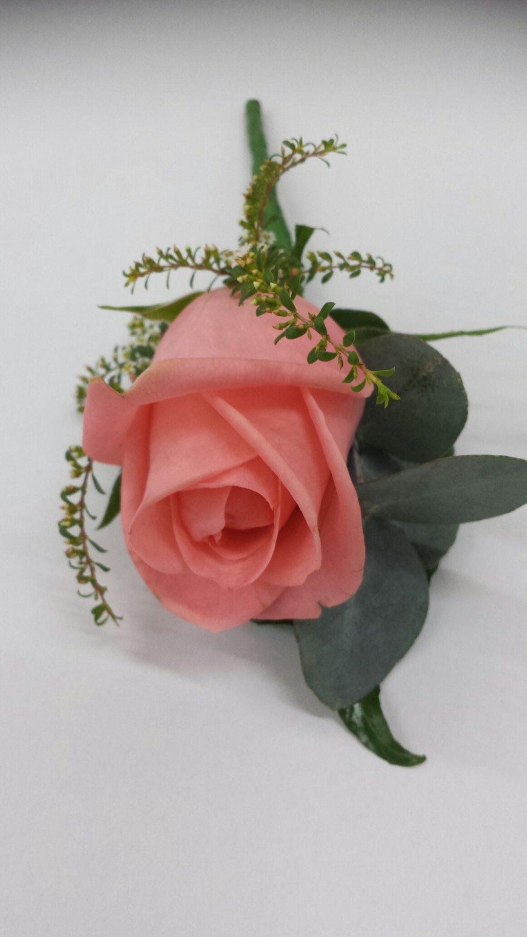 Salmon rose buttonhole