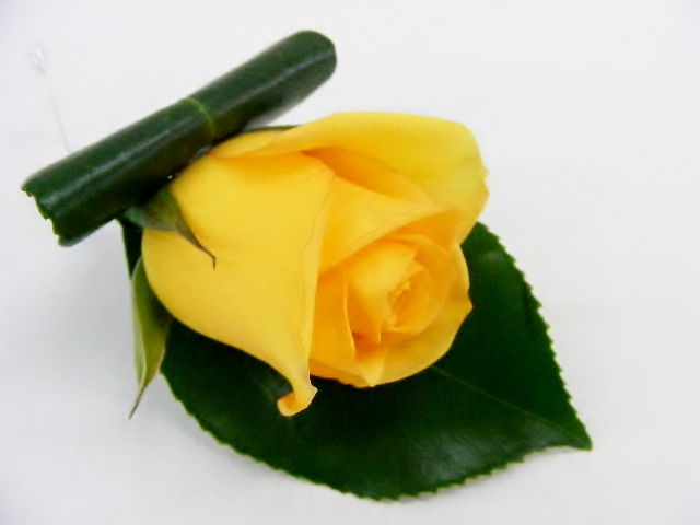 Buttonhole - yellow rose - blackwood florist