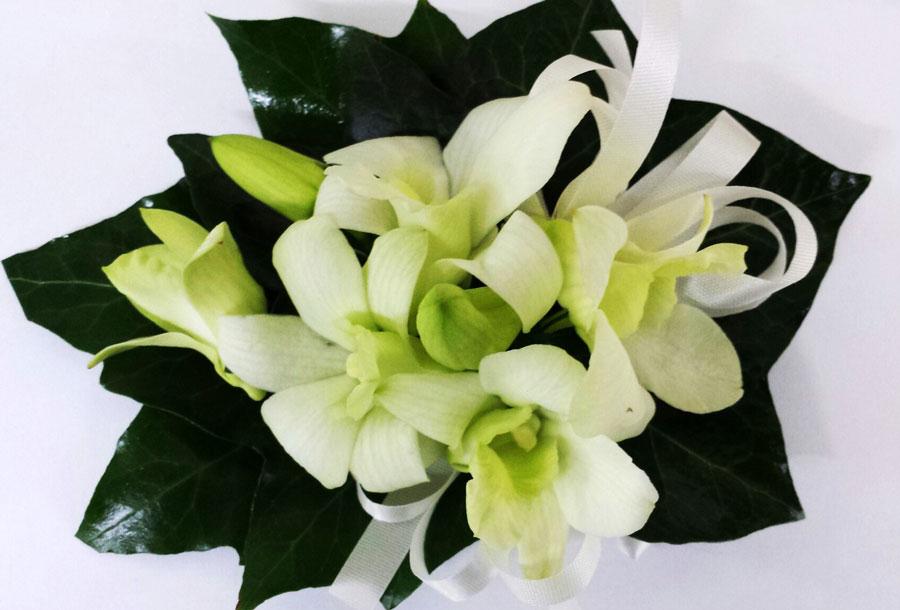 classic singapore orchid corsage