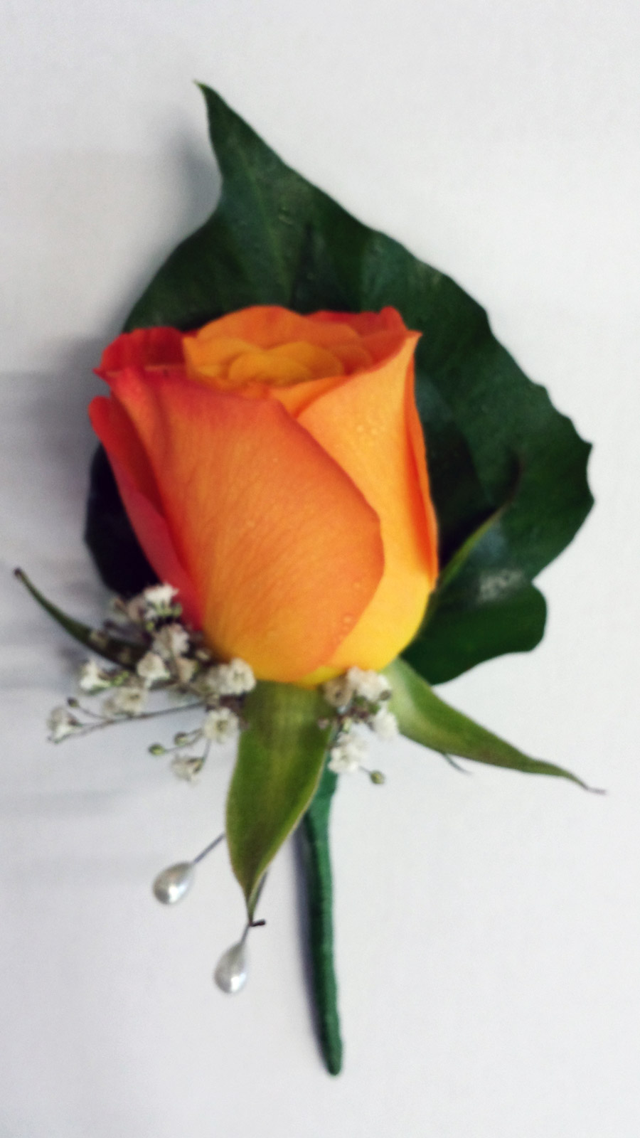 orange-rose with cluster of gyp buttonhole