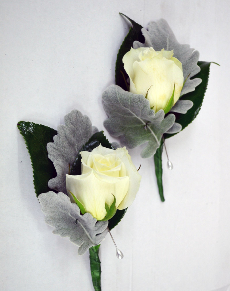 White rose and Dusty miller foliage buttonhole