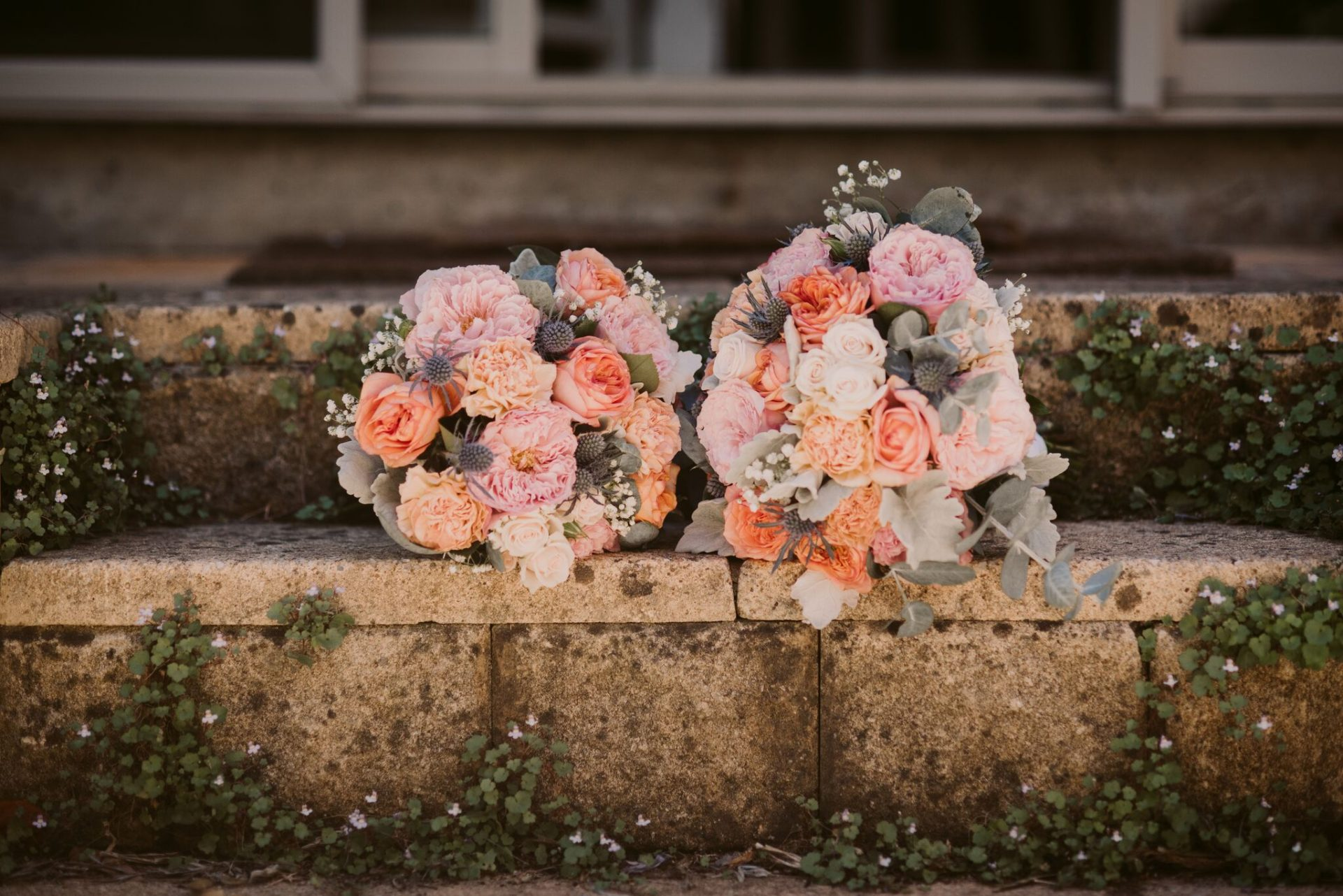 soft apricot and sea holly from Edans wedding