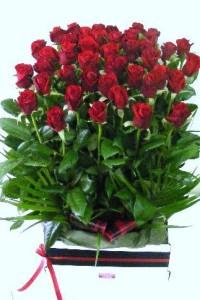 24 Romantic Roses