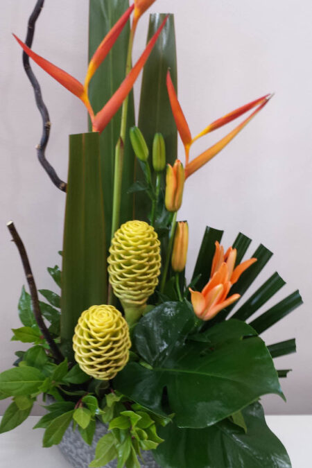 Tropical blooms and Foliages