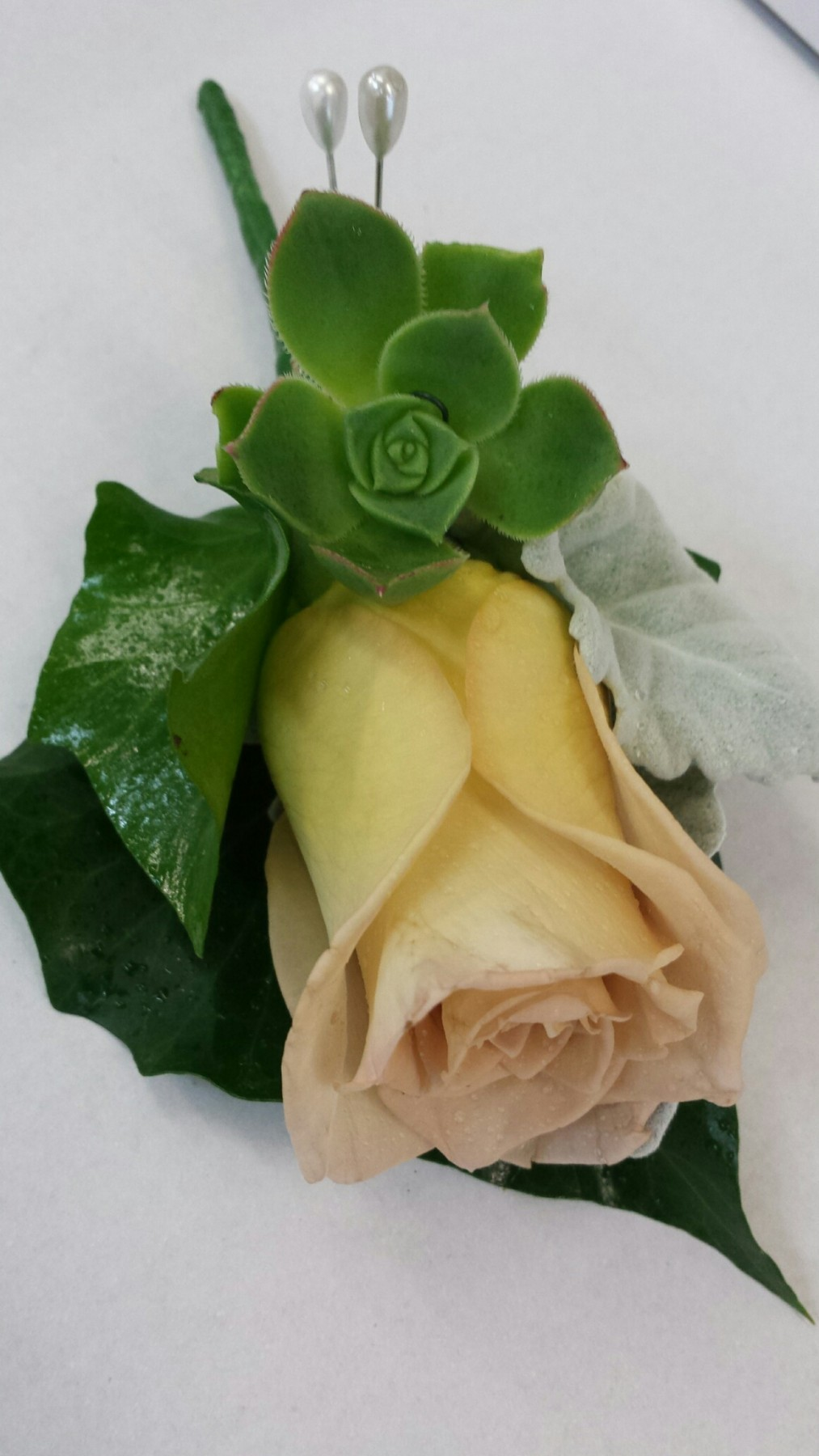 honeymoon rose and succulent buttonhole