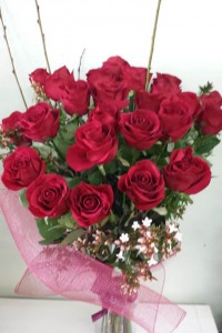 Rose Stunner