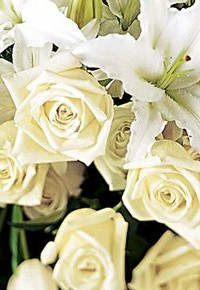 Sympathy flowers all white spray