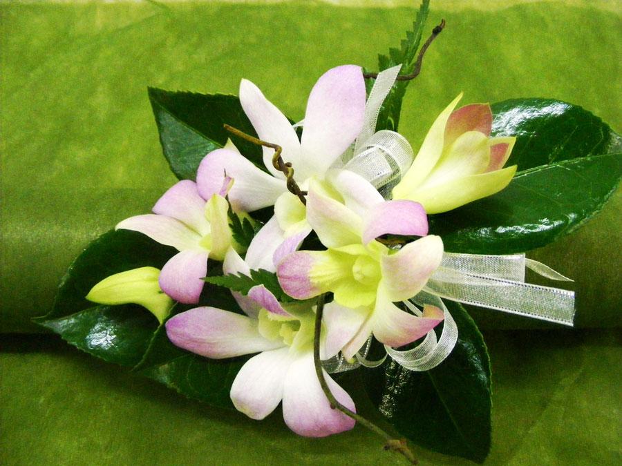 Blackwood Florist wrist corsarge singapore orchids
