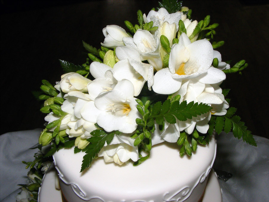 White Freesia and leatherfern cascading cake top