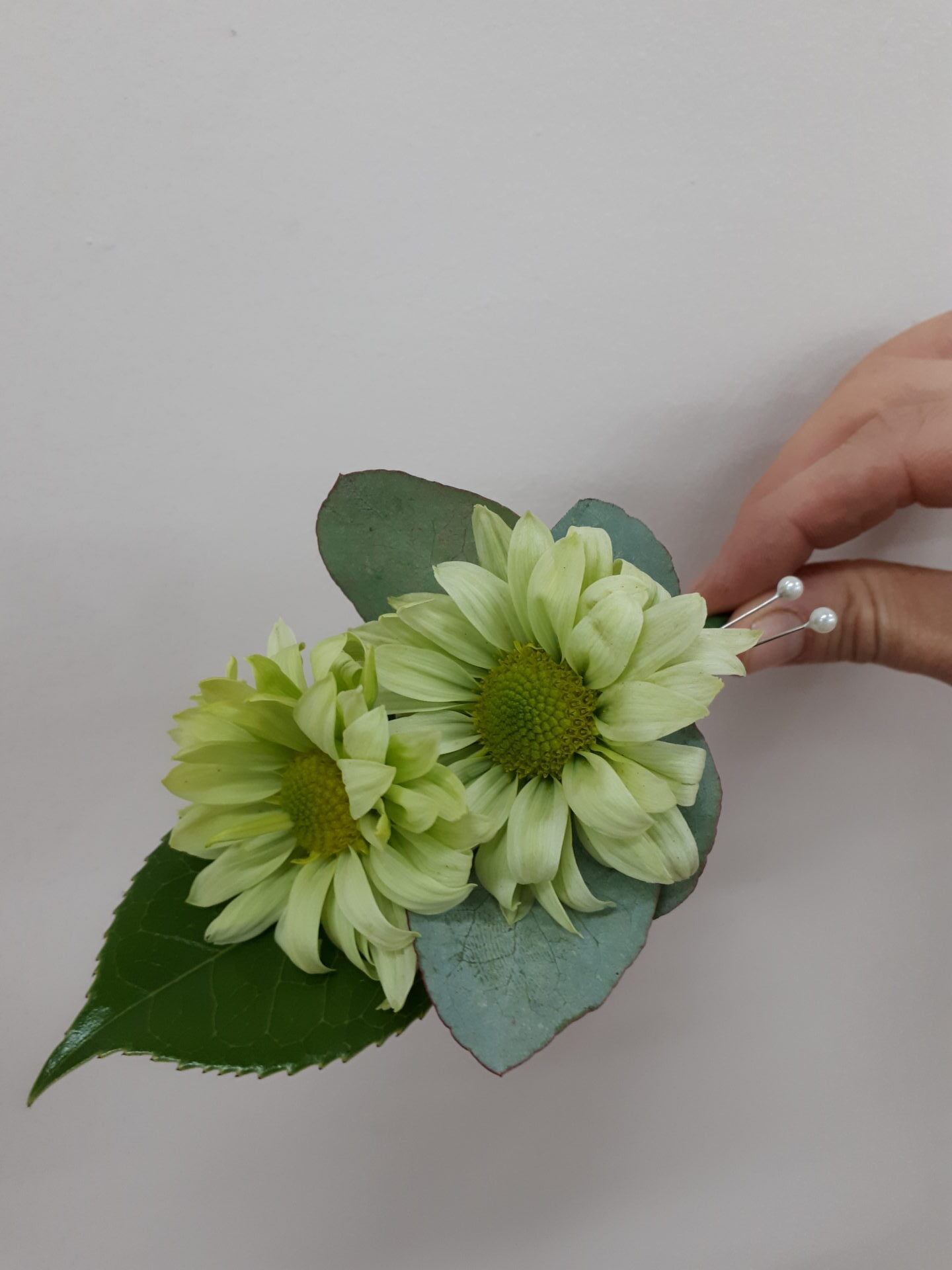 Green daisy and blue gum buttonhole