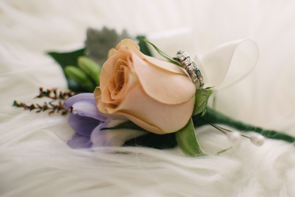 Honeymoon rose and mauve freesia buttonhole