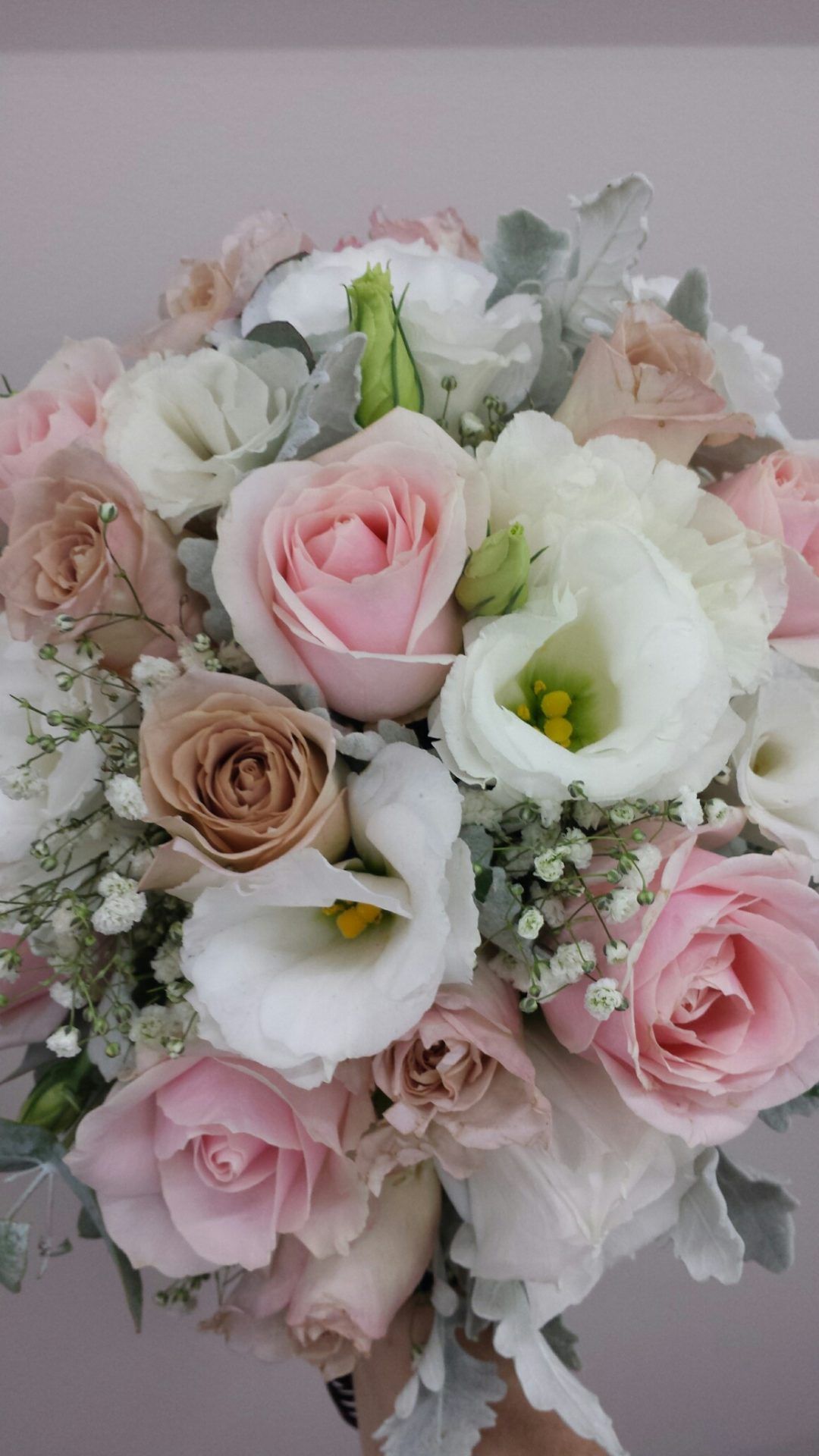 Pale pink roses, lisianthus and gyp