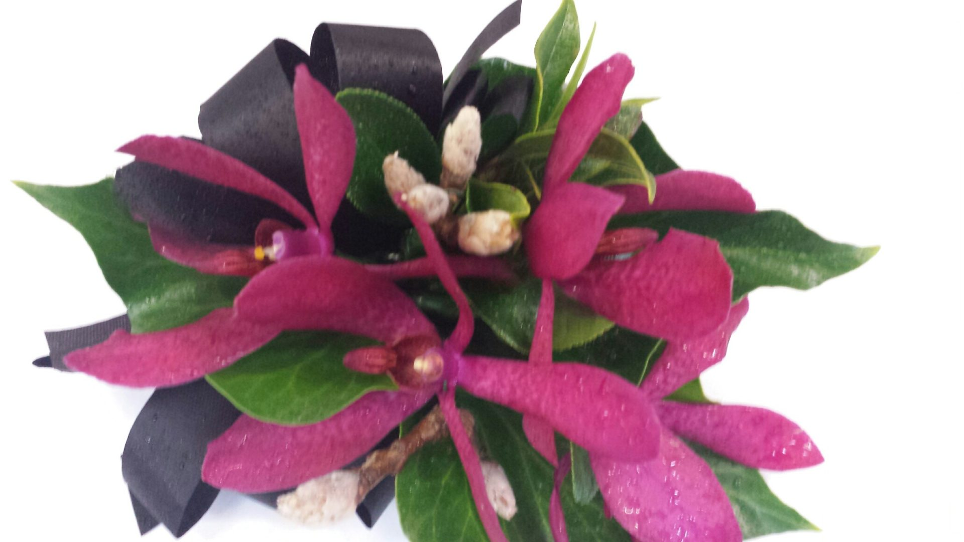 Red singapore orchid corsage