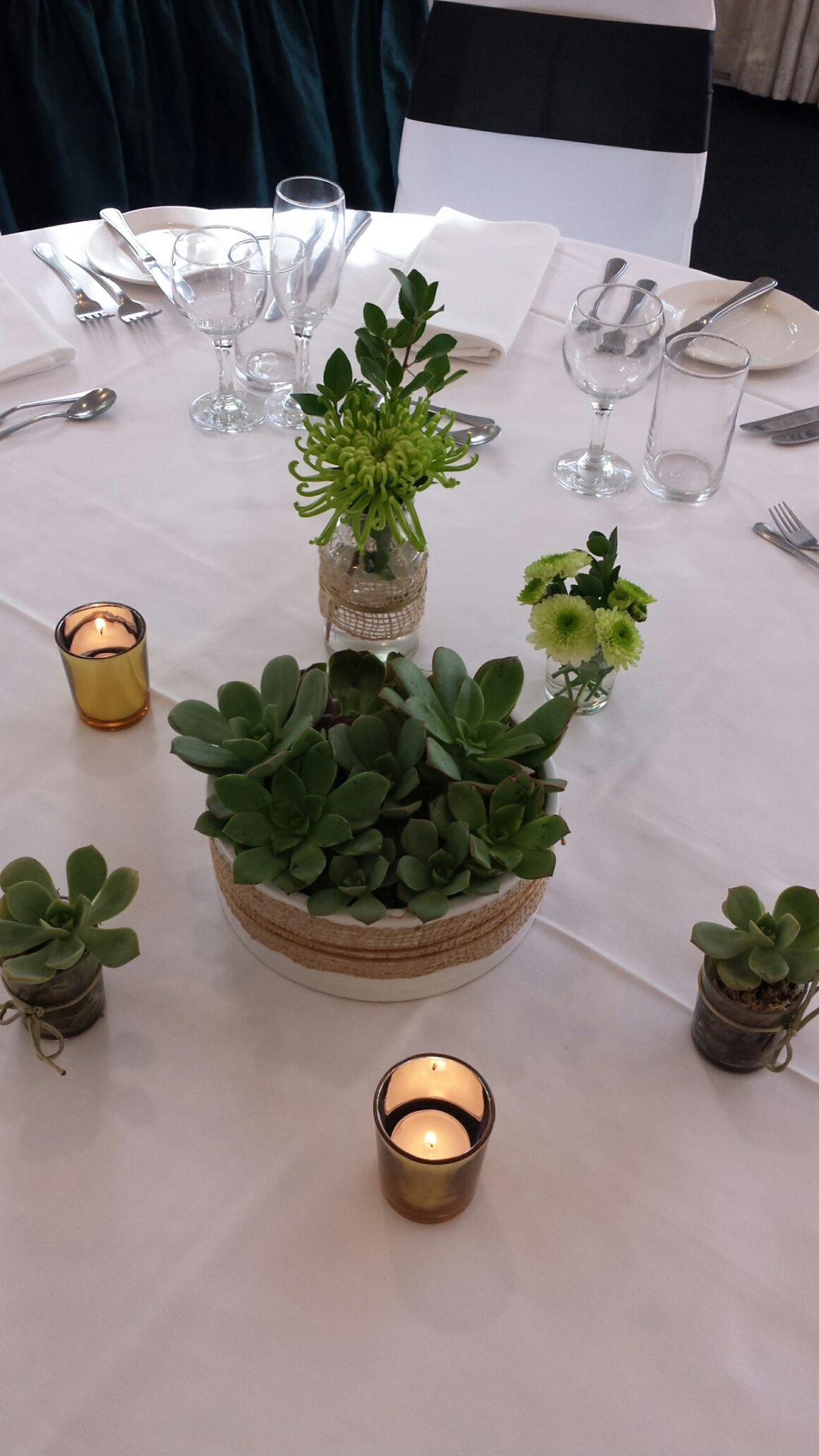 Succulents table setting