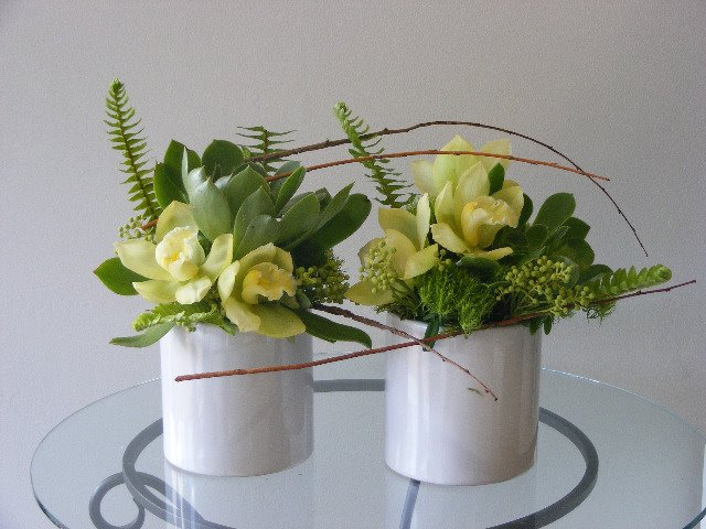 matching pair white and green Cymbidium orchids