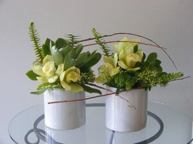 matching pair white and green Cymbidium orchids