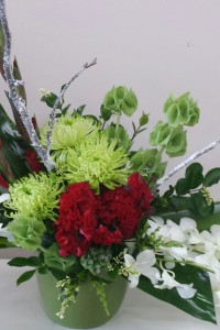 Red,green and white Christmas design